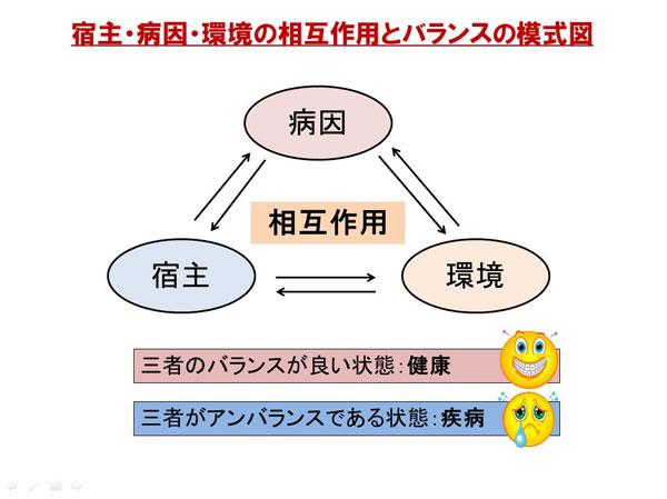 宿主病因環境の相互作用とバランス模式図